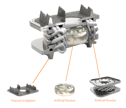 individual components of the M6-C disc